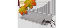 sonnenschutz markisen hochwertige ma anfertigung. Black Bedroom Furniture Sets. Home Design Ideas